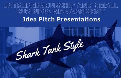 idea pitch presentations