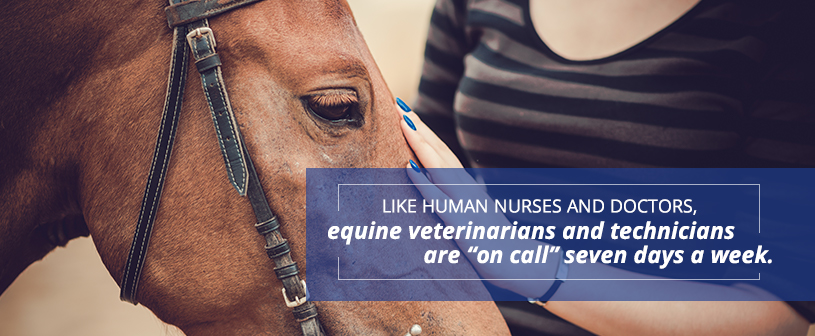 Equne Veterinarians and technicians are on call seven days a week